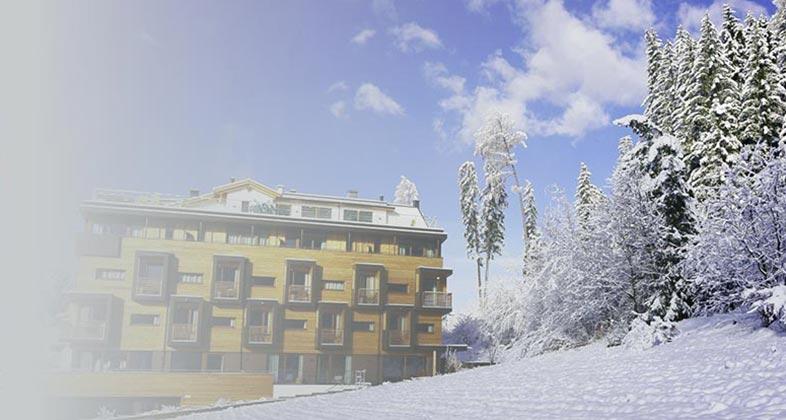 Wir liefern Ski ins Hotel Waldruhe