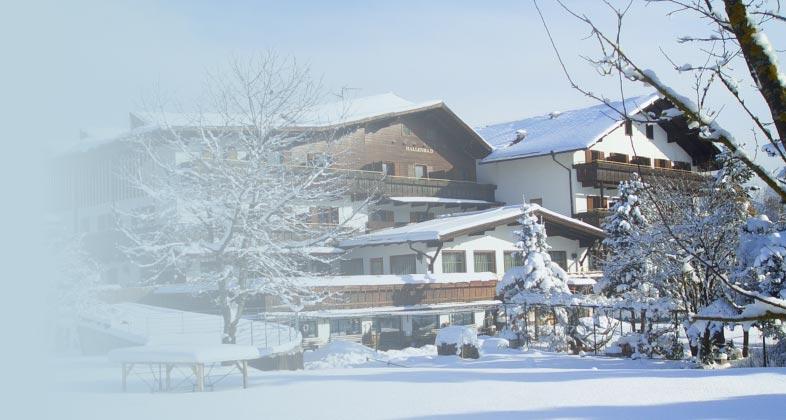 Consegna ski direttamente al vostro albergo Edy